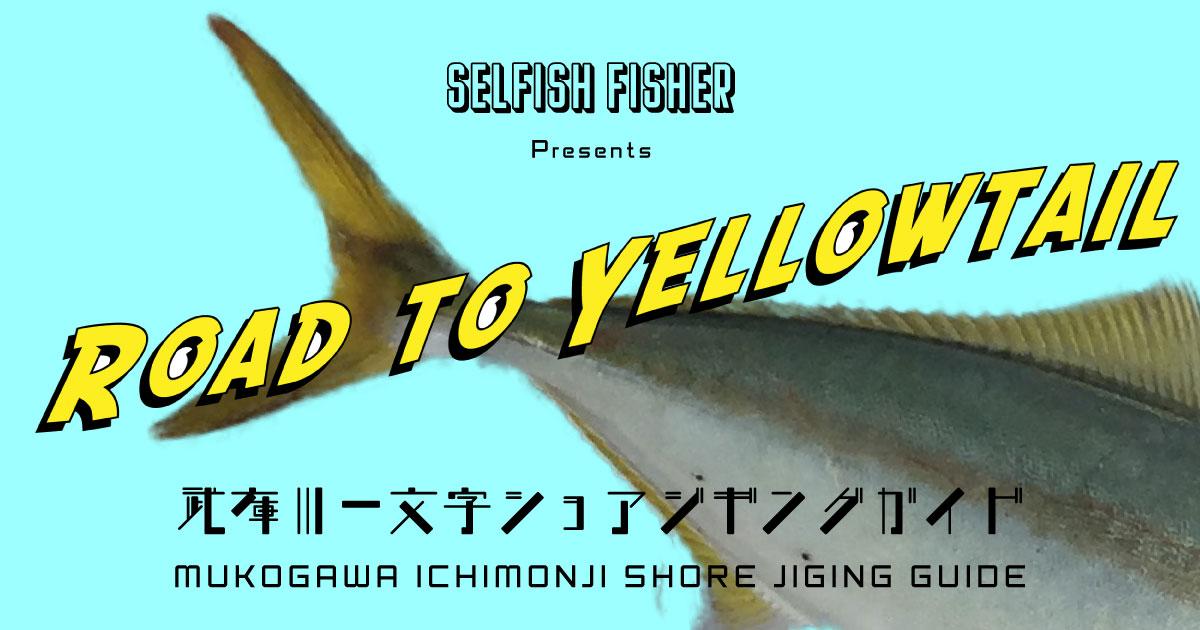 Road to Yellowtail 【武庫川一文字ショアジギングガイド】